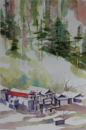 Mountain Village study